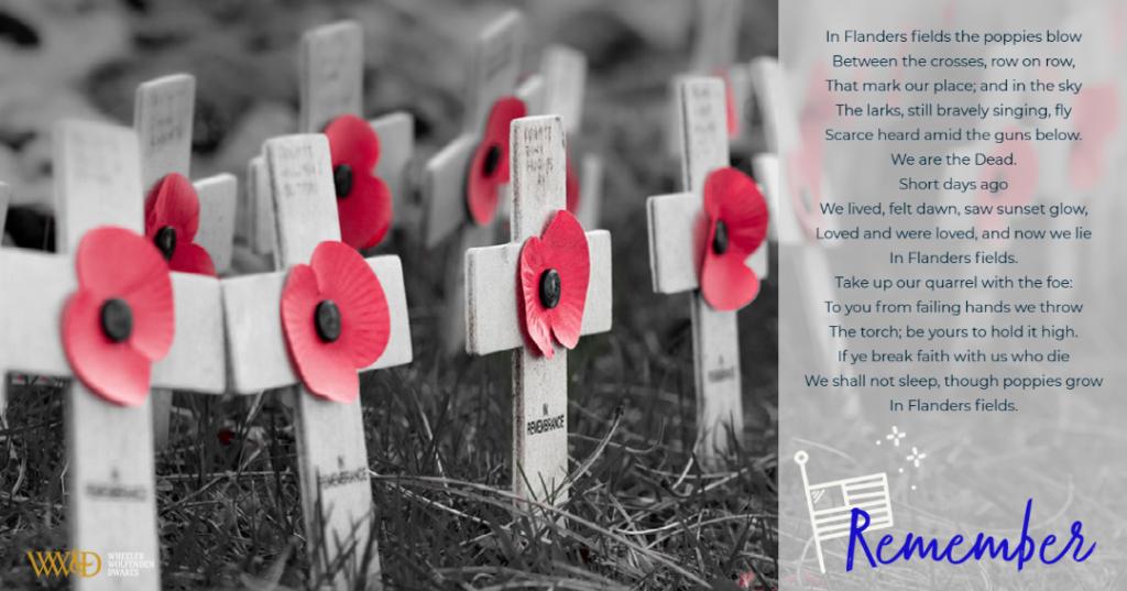 white crosses with red poppies.  Poem Flanders Fields alongside crosses